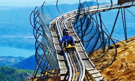 Sfreccia sull'Alpine Coaster, al parco divertimenti Alpyland. Pacchetti da 2,4,6 discese. (sconto fino a 42%)